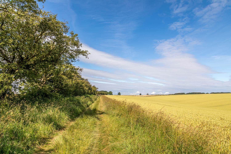 Chalkland Way