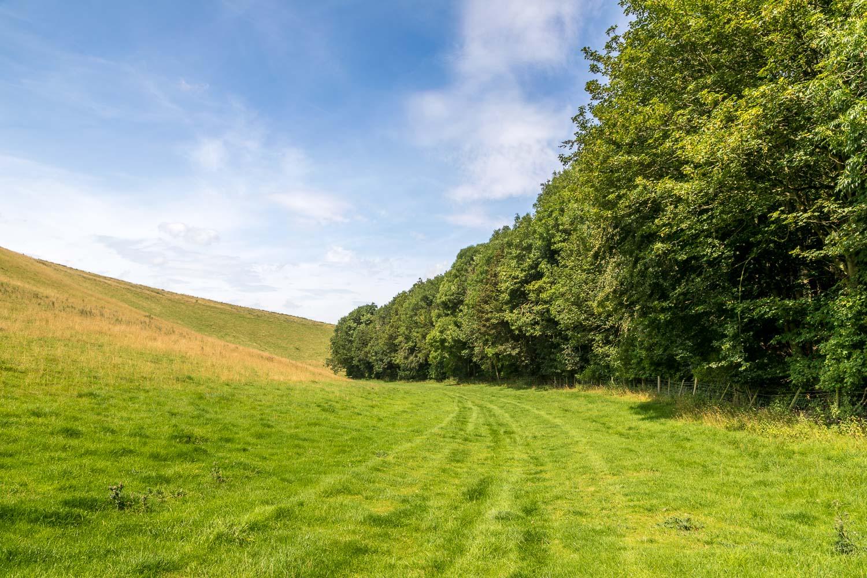 Chalkland Way, Wetwang walk, Huggate walk, Oxlands Dale