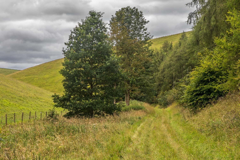 Chalkland Way, Tun Dale