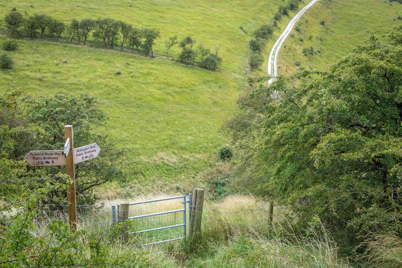 Chalkland Way, Millington Dale