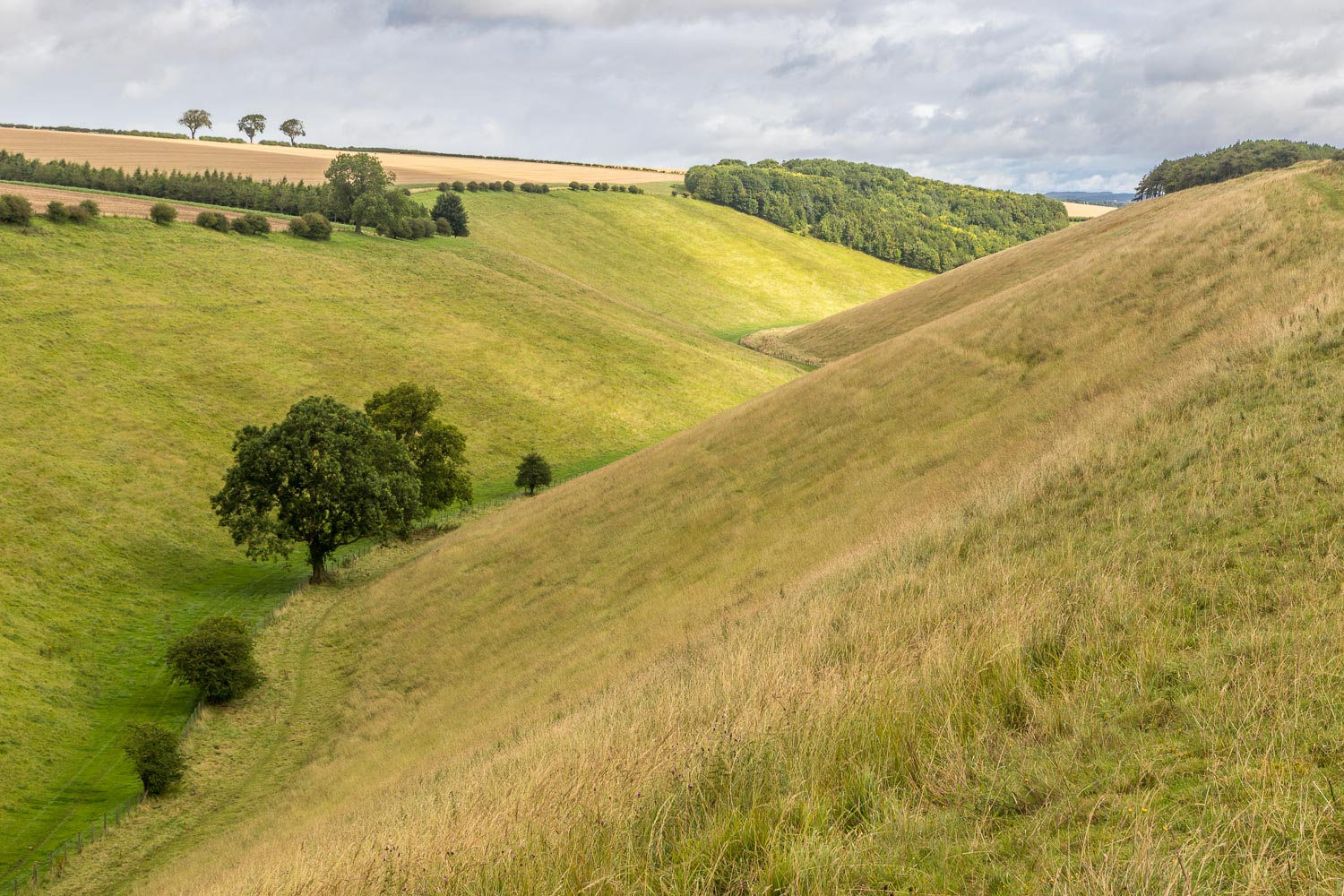 Chalkland Way, Horse Dale
