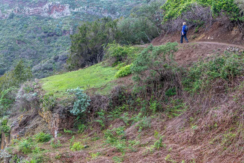Tenerife walk