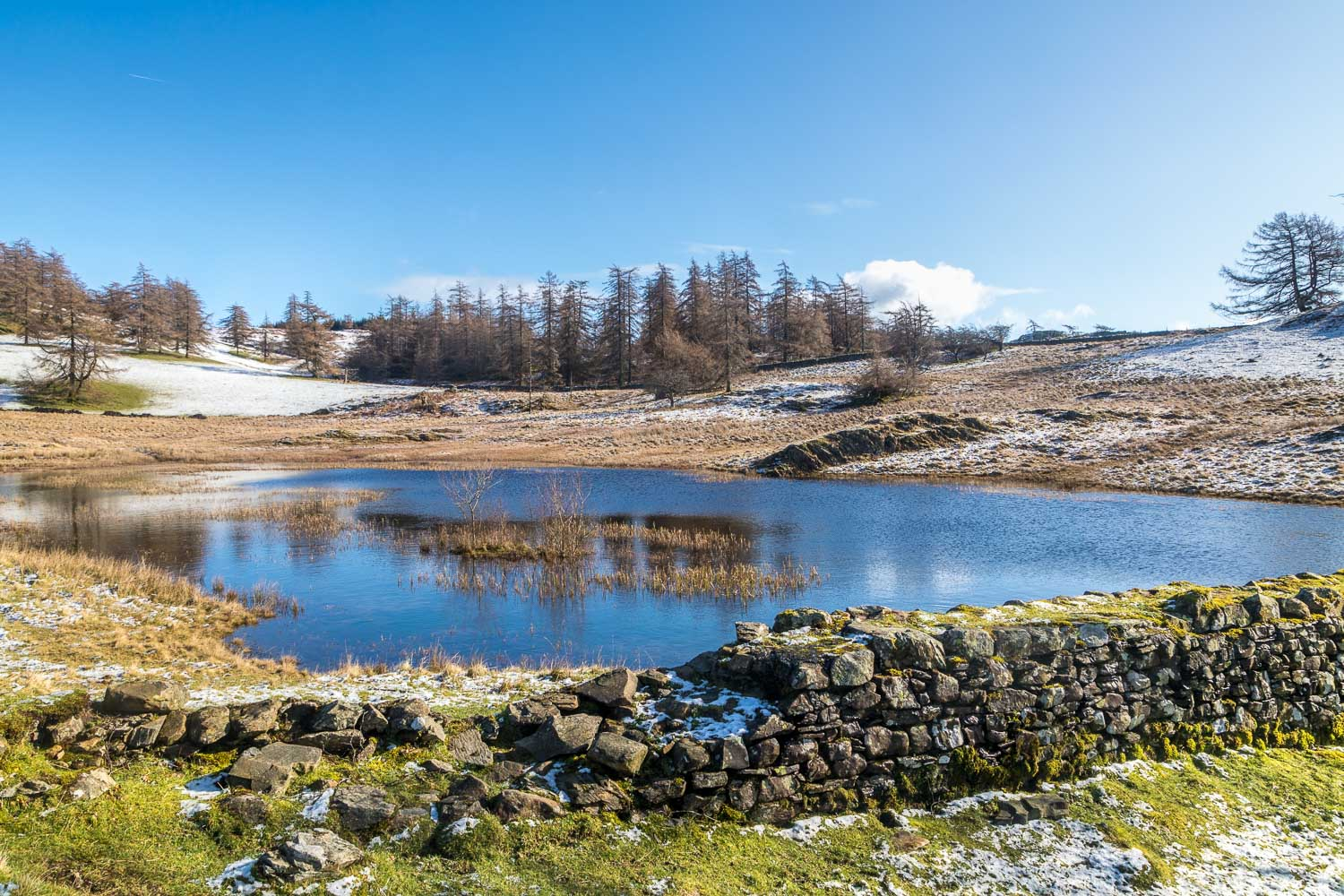 Claife Heights tarn