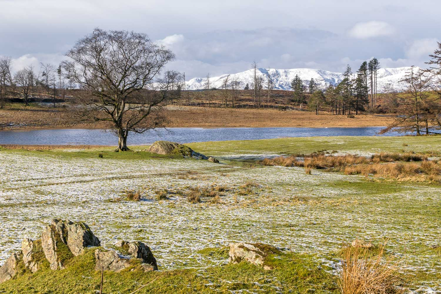 Wise Een Tarn, Claife Heights