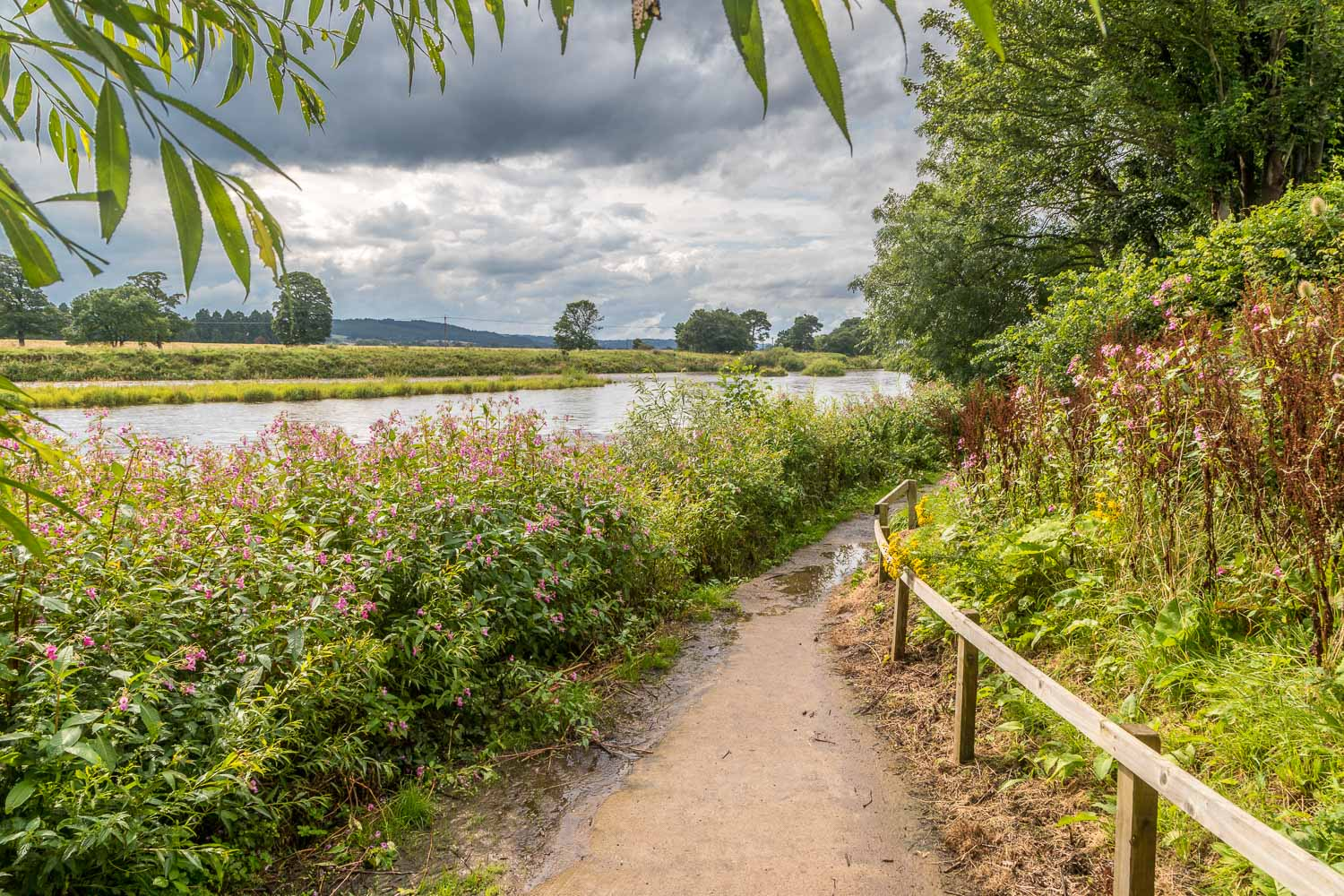 Corbridge walk, River Tyne