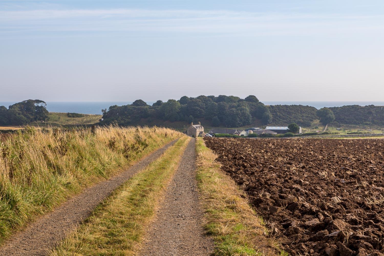 Craster walk