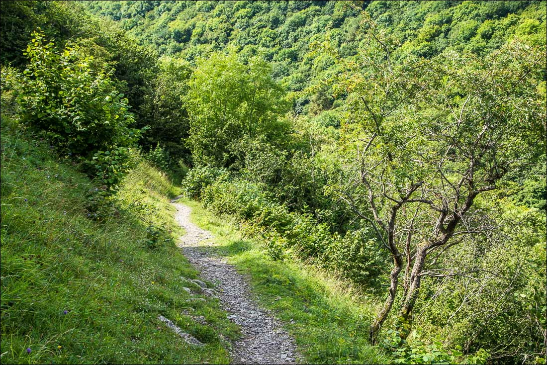 Cressbrook Dale walk