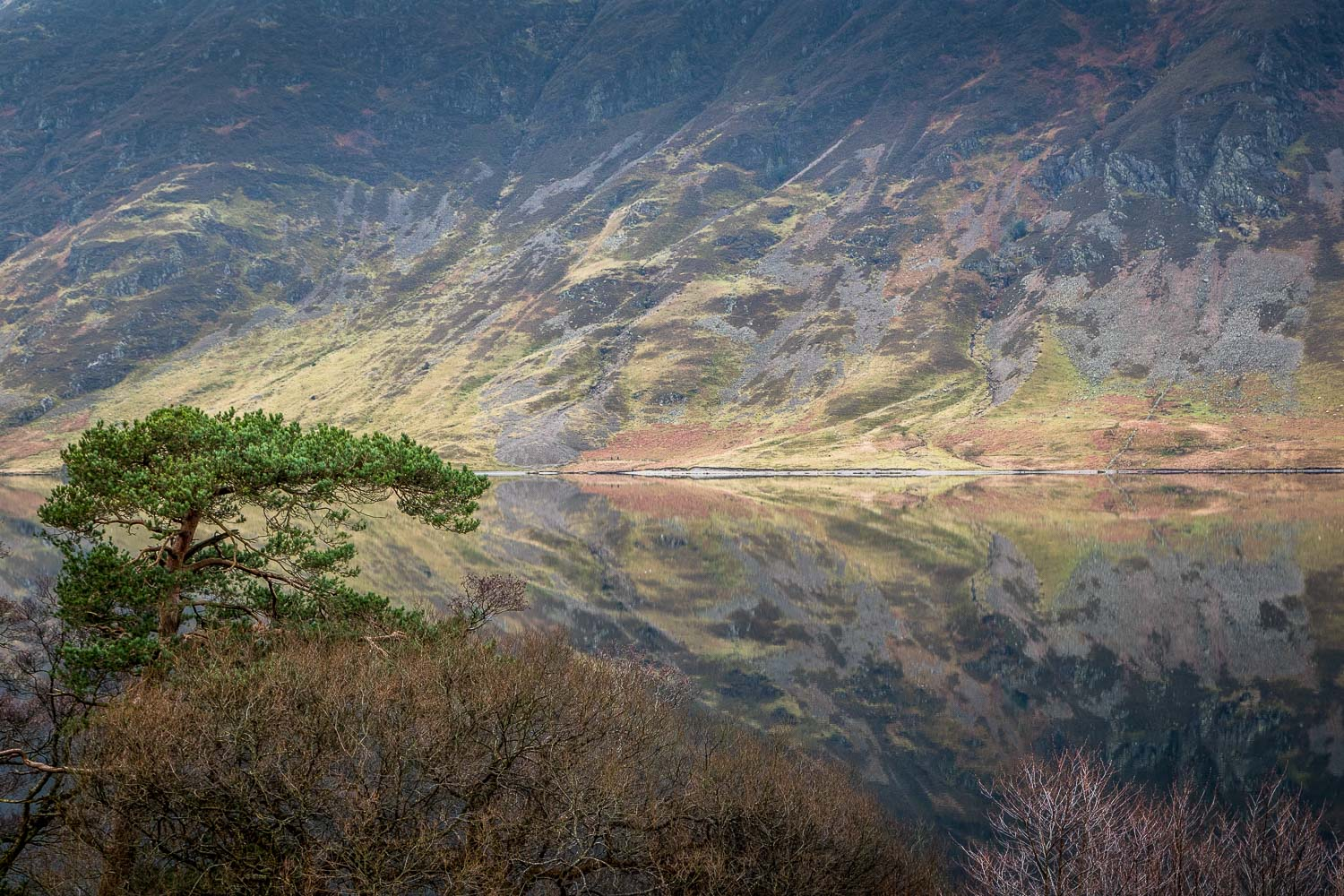 Reflections in Crummock Wate