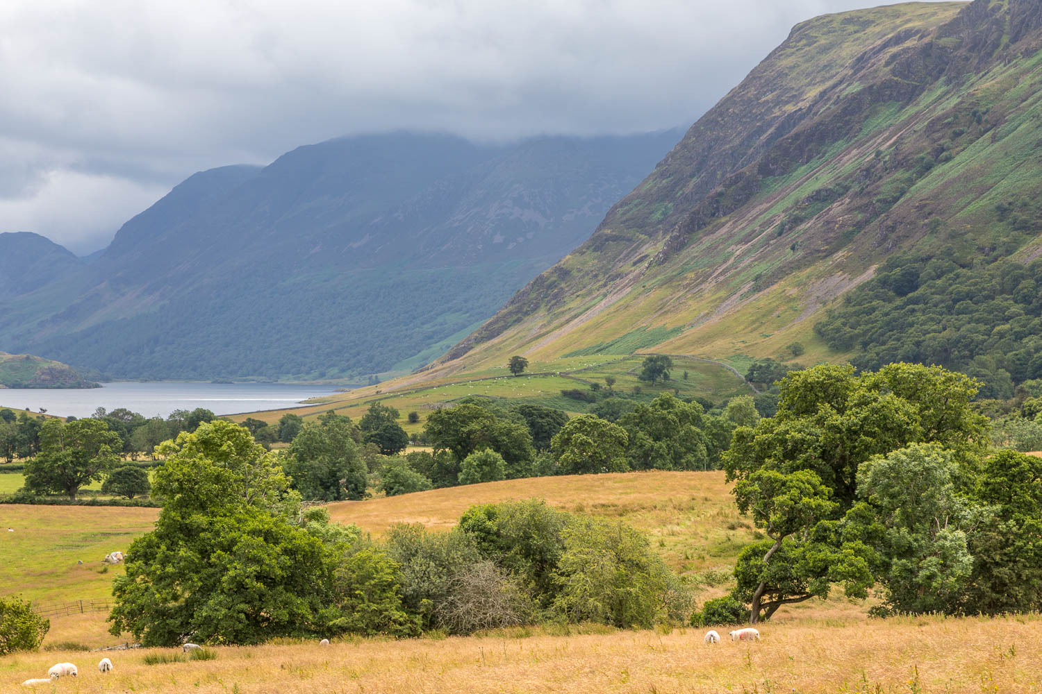 Crummock Water cottages