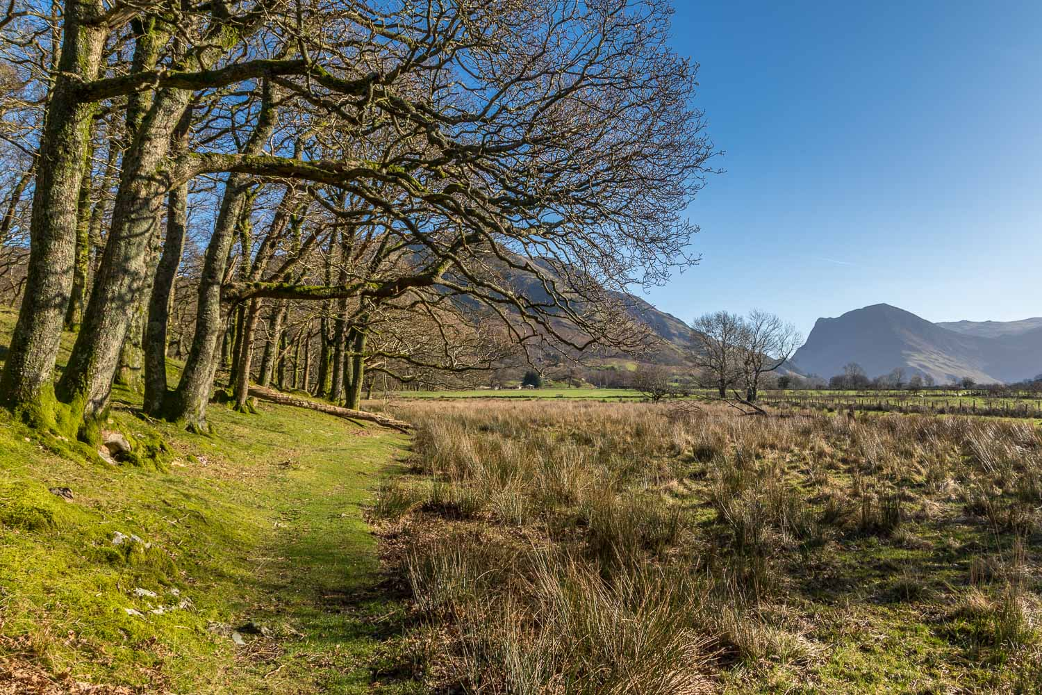 Crummock Water and Buttermere walk