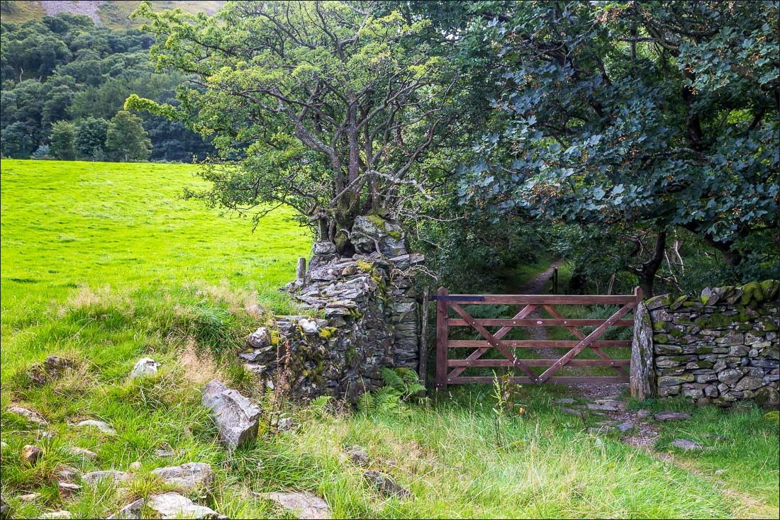 Crummock Water walk, Park Beck