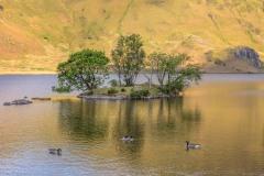 Woodhouse Island Crummock Water