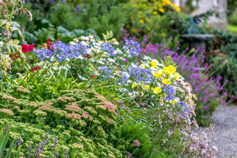 Dalemain garden