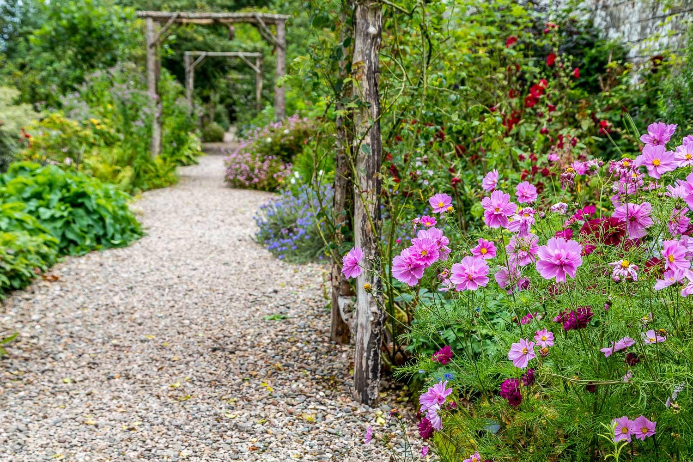 Dalemain garden, Rose Walk