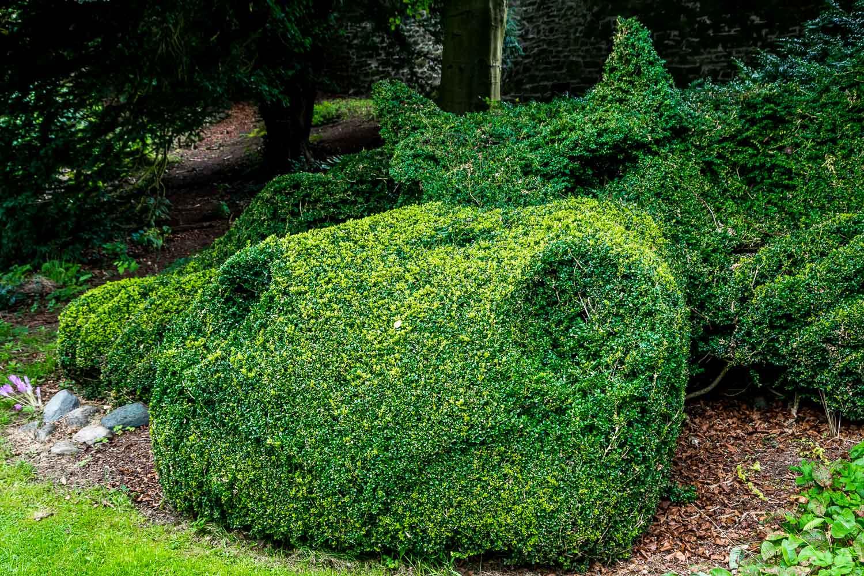 Dalemain garden dragon