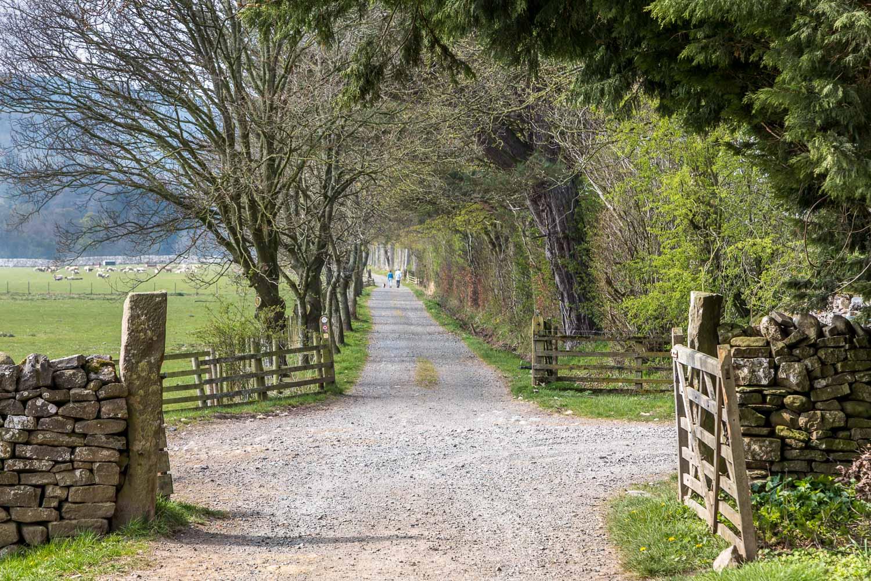 Dalemain to Dacre walk