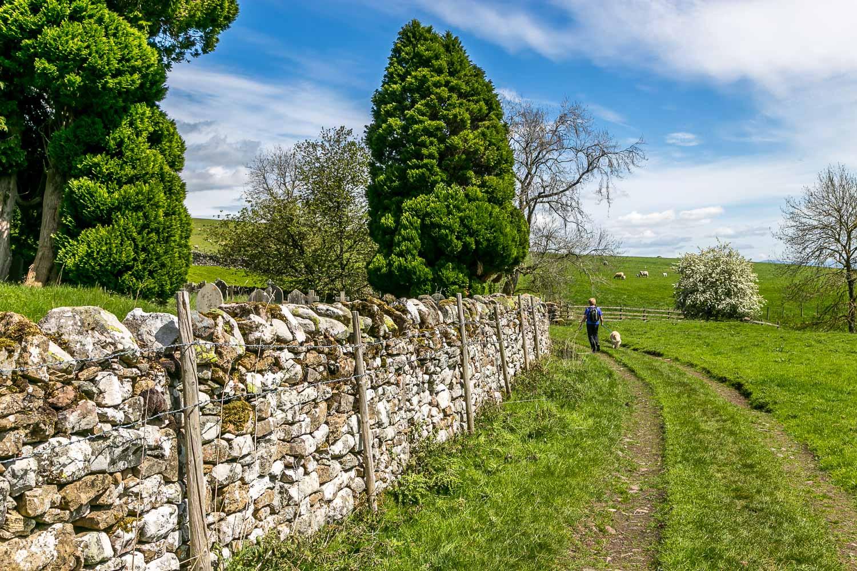 Dalemain to Dacre walk, St Andrews Church Dacre