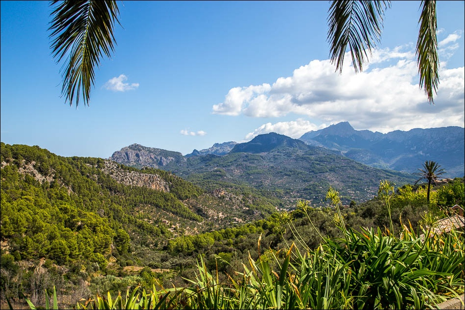 The Tramuntana mountains from Can Prohom