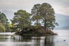 Derwent Water, Otter Island