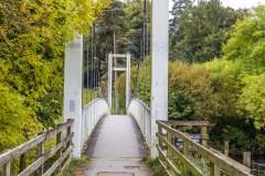 Derwent Water walk, suspension bridge