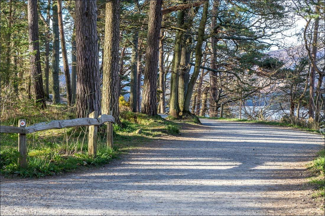Path to Friar's Crag
