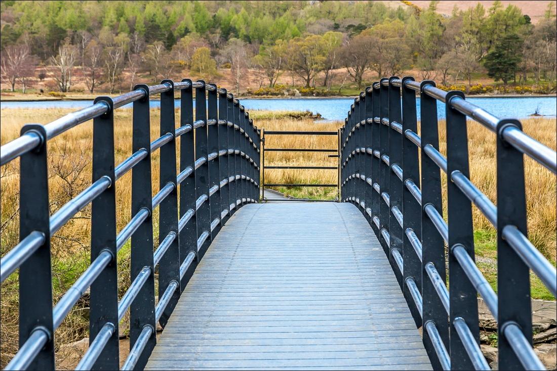 Chinese Bridge over the River Derwent