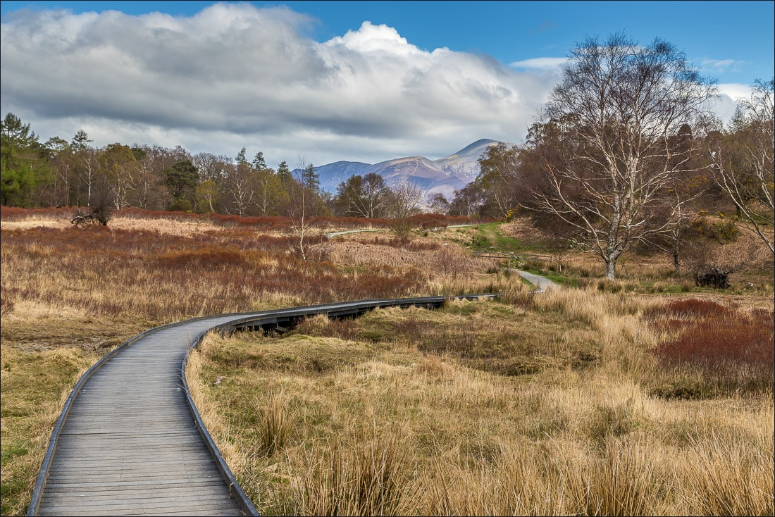 Derwent Water boardwalk