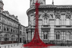 Weeping window, Hull