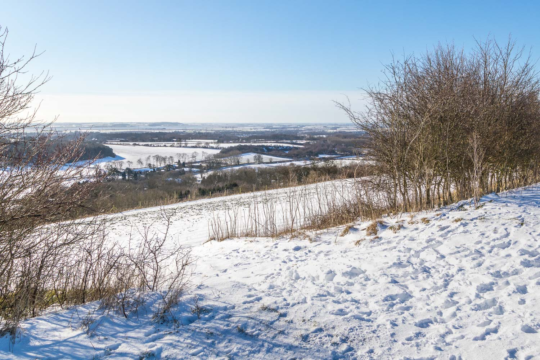 Drewton view