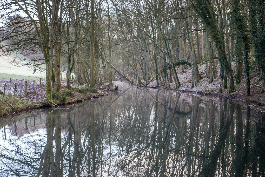 Drewton Springs