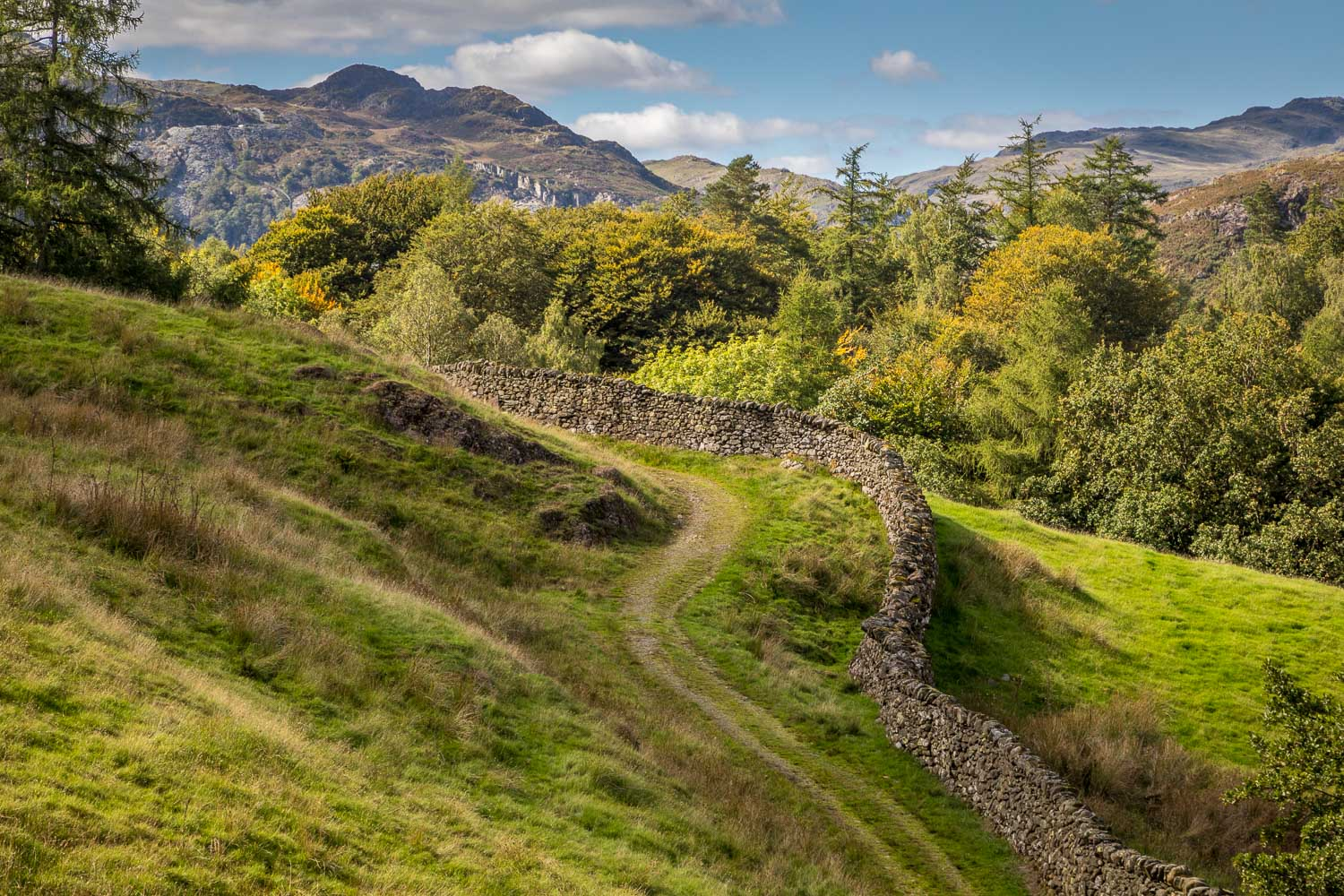 Langdale, dry stone wall