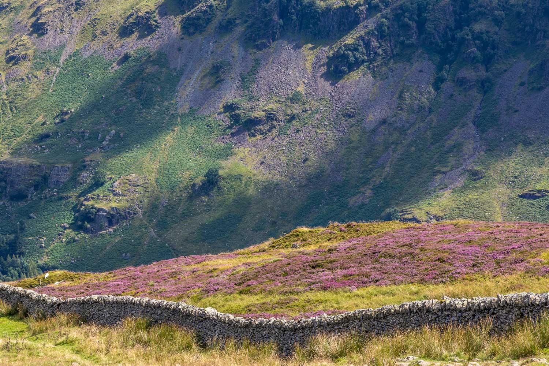 Dry stone wall Lake District