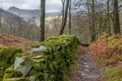 Little Langdale, dry stone wall