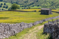 Yorkshire Dales dry stone wall