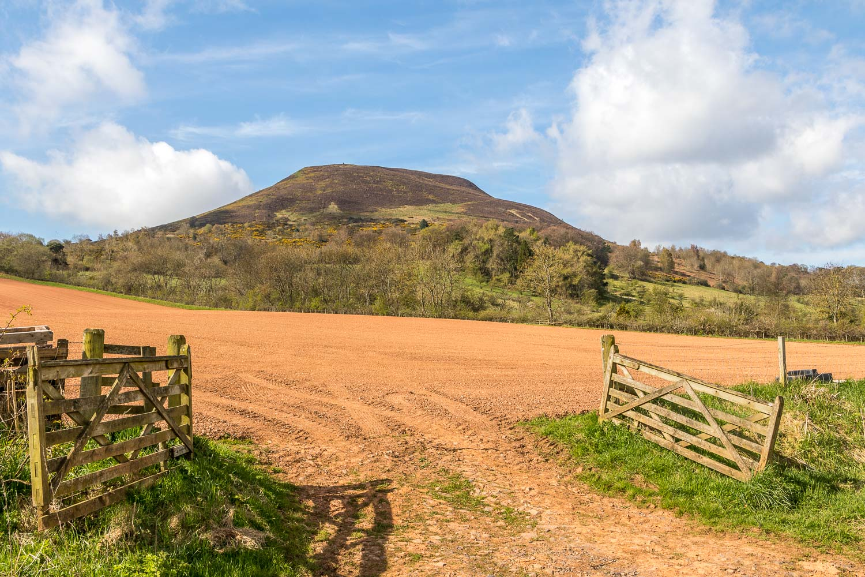 Eildon Hills-17