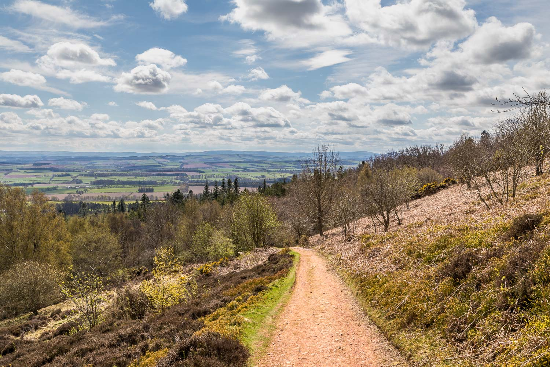 Eildon Hills-37