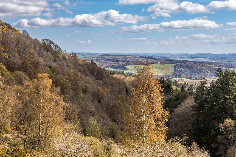 Eildon Hills-38