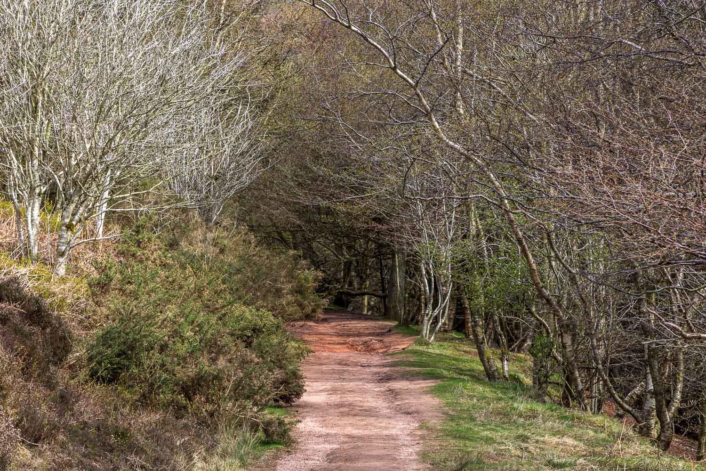 Eildon Hills-44