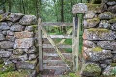 Lakeland gate hinges