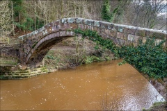 Esk Valley walk, Beggars Bridge