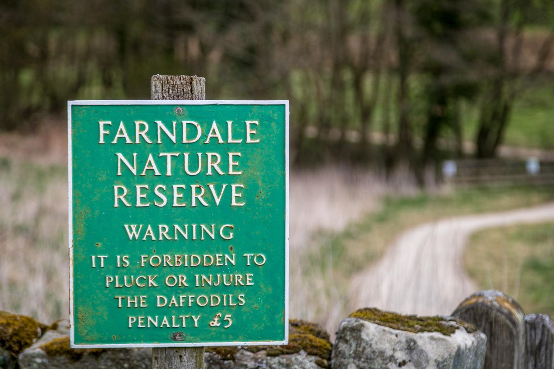 Farndale