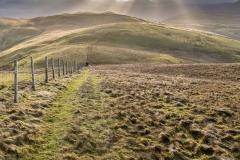 Fellbarrow walk