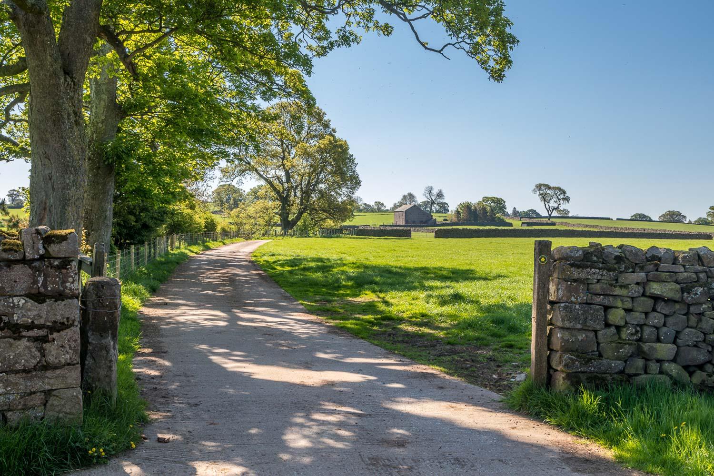 Flakebridge Wood walk