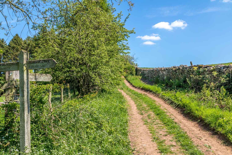 Flakebridge walk