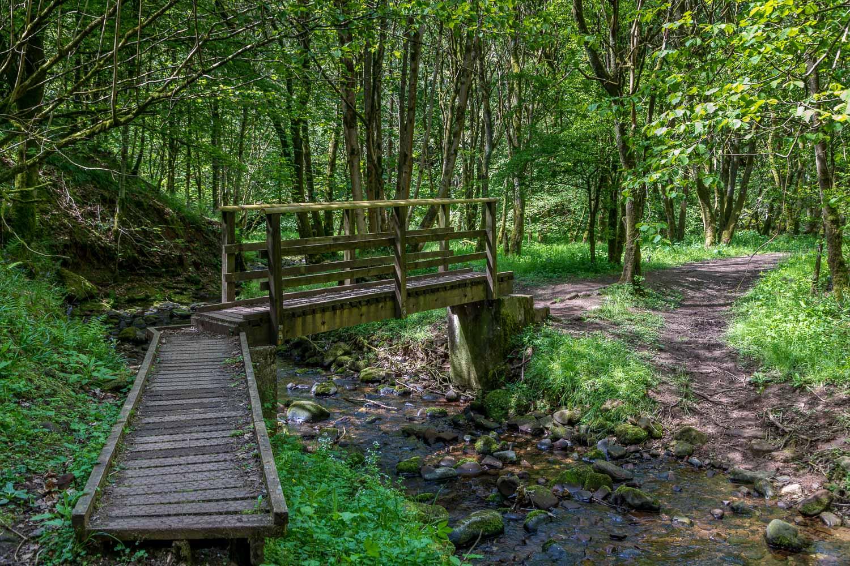 footbridge over Dufton Gill