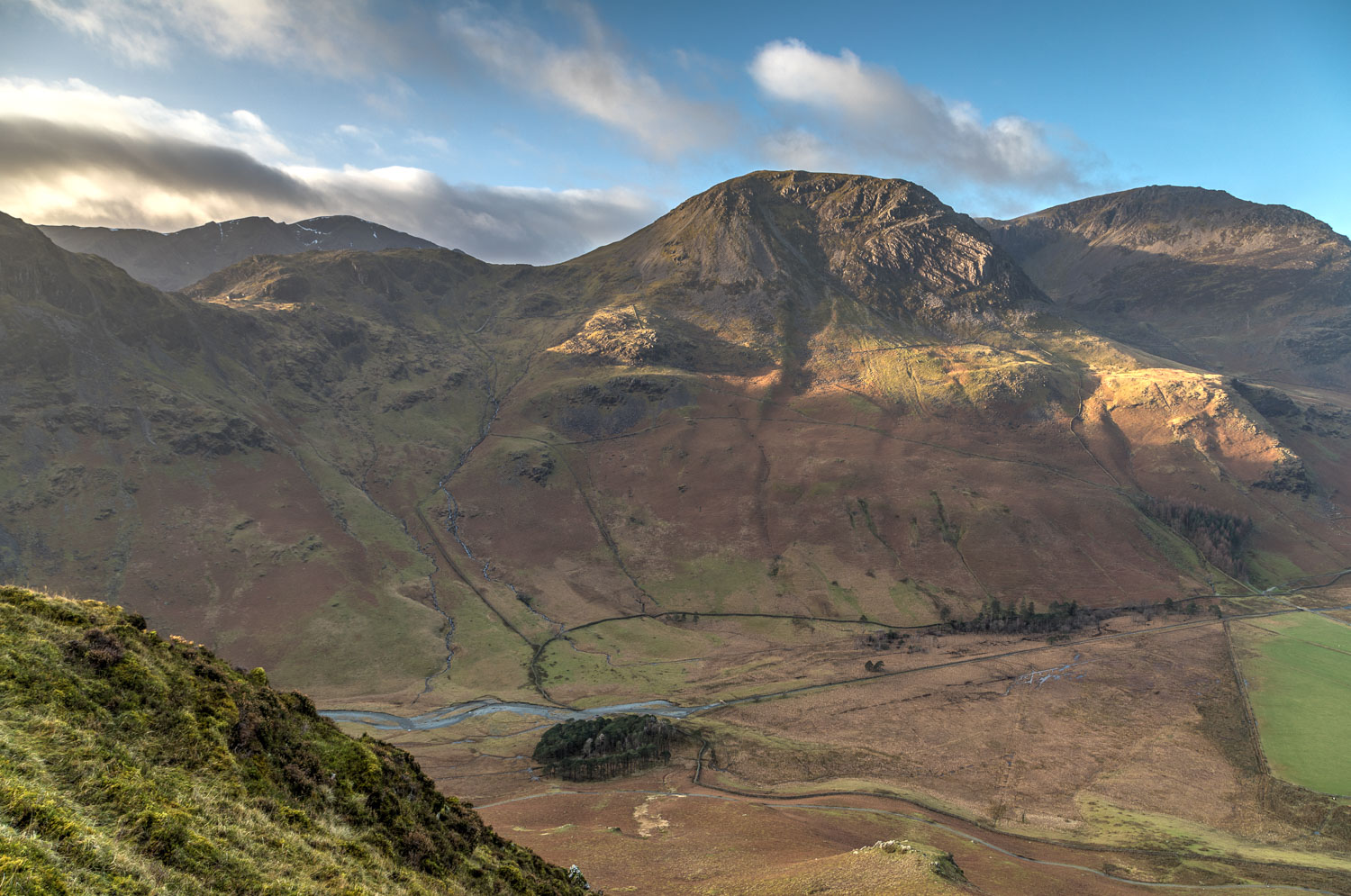 High Crag, Buttermere pines
