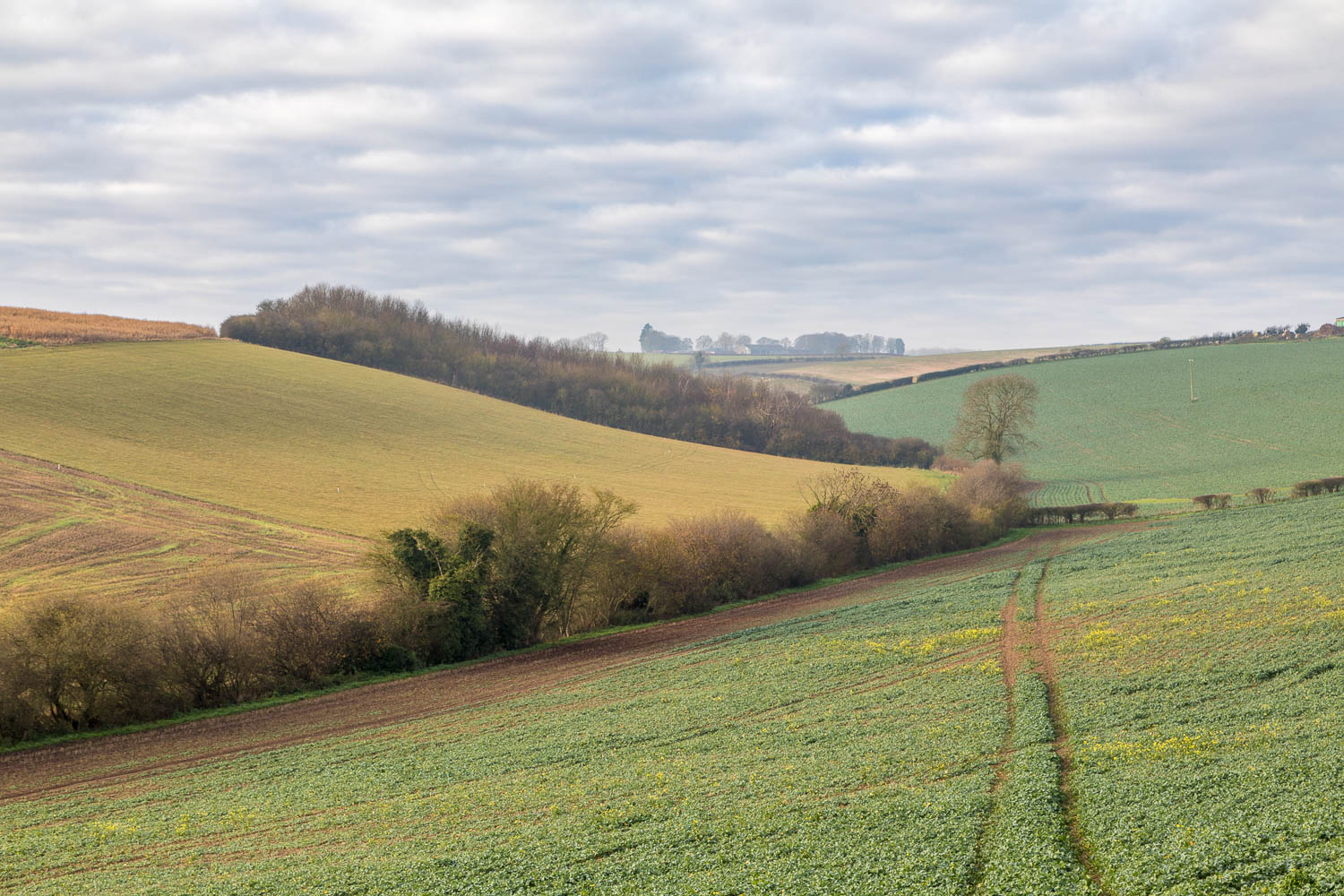 Fotherby walk, Lincolnshire Wolds walk