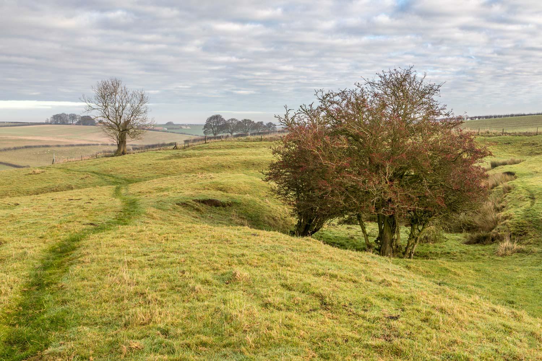 Fotherby walk, North Elkington medieval village