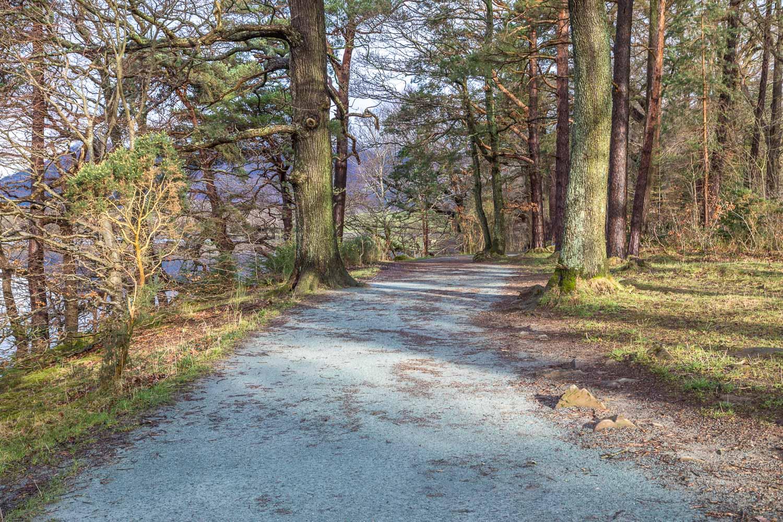Friars Crag path