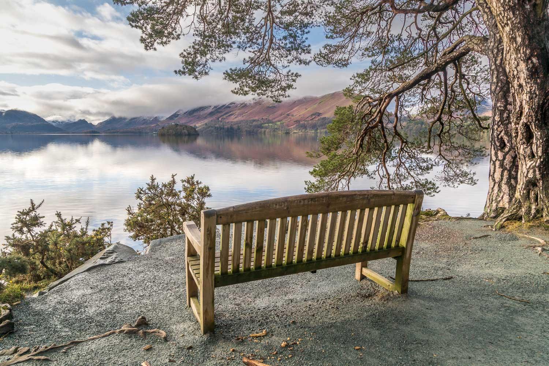 Friars Crag bench